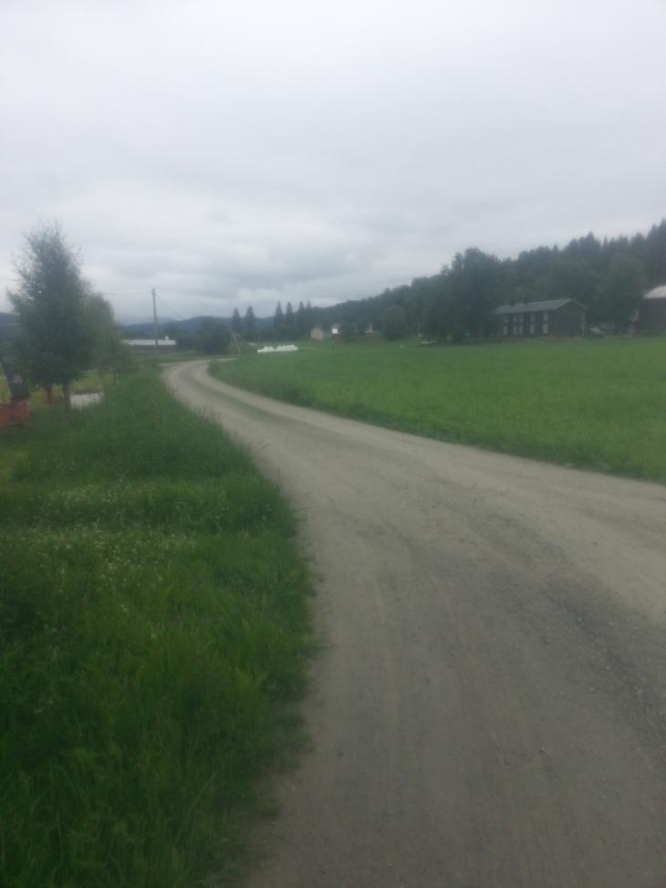 Første 1,5km går på grusvei. Her fra et flatt parti over Systobakkan.