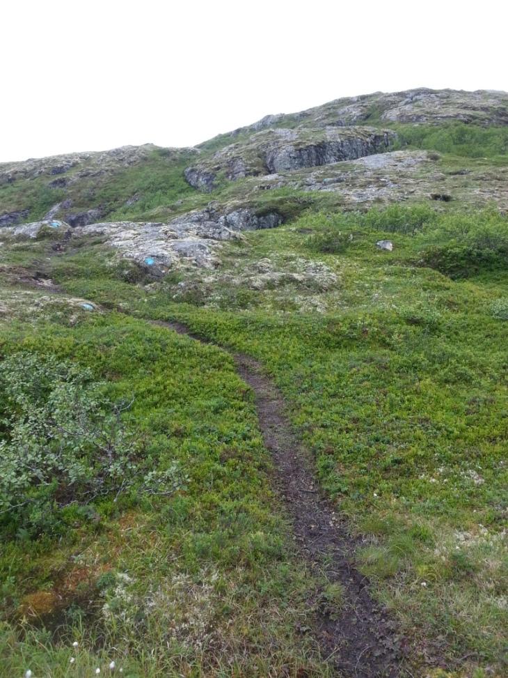 5km-7km går på myr og sti. Jevn stigning.